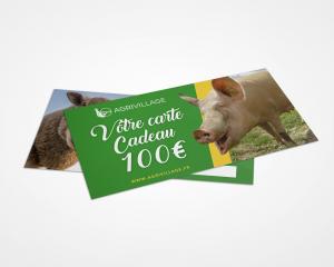 carte-cadeau-100